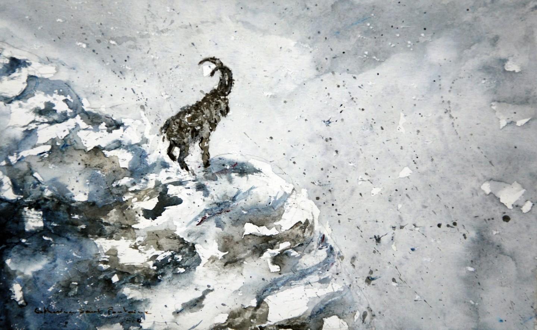 catherinesaintfontaine - bouquetin dans la neige