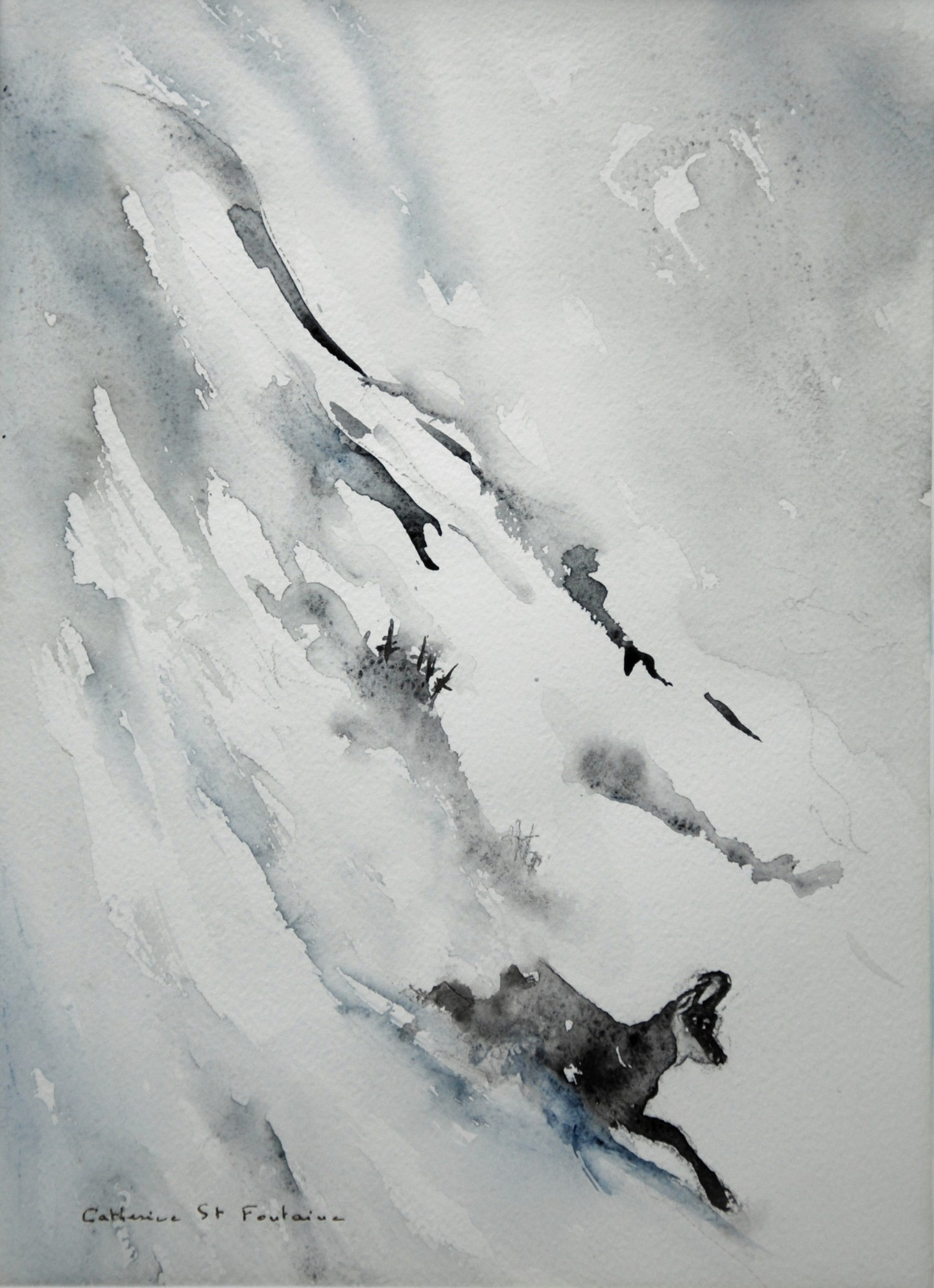 catherinesaintfontaine - la course du chamois