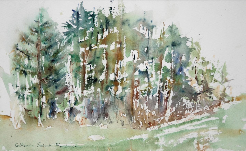 catherinesaintfontaine - arbres, évanescence